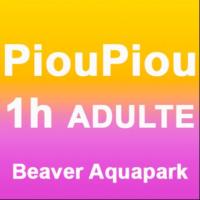 1H Piou-piou Accompagnateur