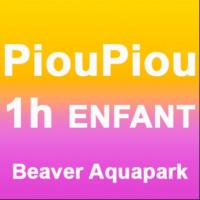 1H Piou-piou